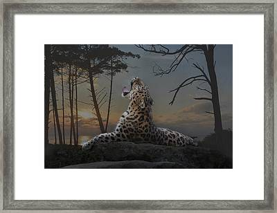 When The Night Comes Framed Print by Joachim G Pinkawa