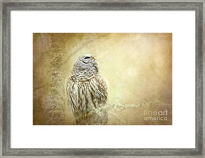 When The Time Comes Framed Print by Beve Brown-Clark Photography