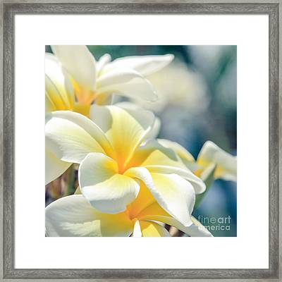 Where Happy Spirits Dwell - Cearnach Framed Print by Sharon Mau
