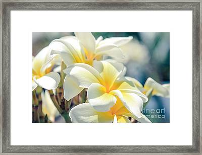 Where Happy Spirits Dwell Framed Print by Sharon Mau
