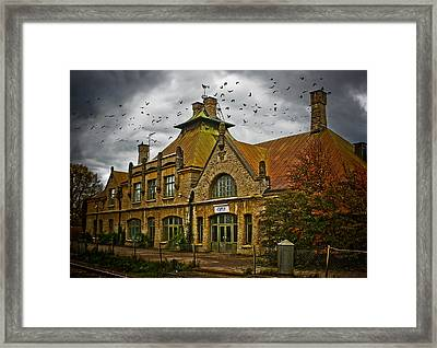 Where The Ravens Fly Framed Print by Maggie Terlecki
