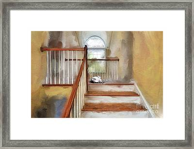 Where's Kitty Framed Print by Lois Bryan