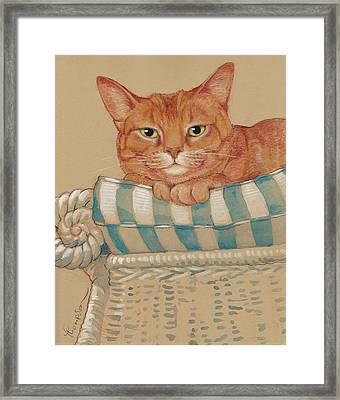 Where's My Daiquiri? Framed Print by Tracie Thompson