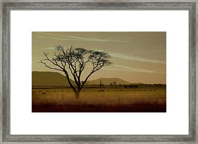 Wherever I May Roam Framed Print by Holly Kempe