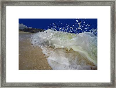 Whimsical Paradise Framed Print by Betsy C Knapp