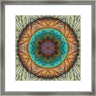 Whispering Pines Framed Print by Becky Titus