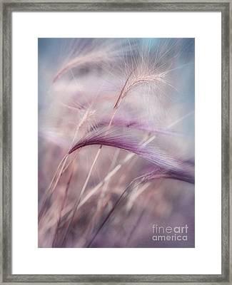 Whispers In The Wind Framed Print by Priska Wettstein