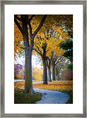 Whispers Of The Forest Framed Print by Daniel Chen