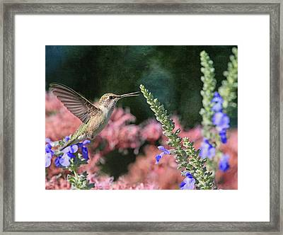 Whistle While You Work  Framed Print by Donna Kennedy