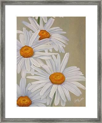 White Daisies Framed Print by Angeles M Pomata