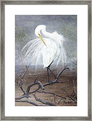 White Egret Framed Print by Kevin Brant