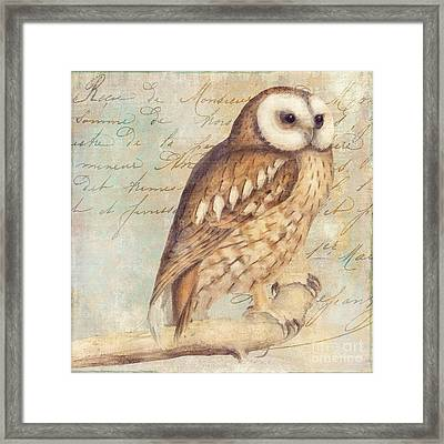 White Faced Owl Framed Print by Mindy Sommers