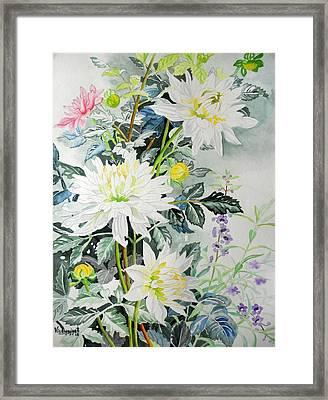 White Hibiscus Framed Print by Vishwajyoti Mohrhoff