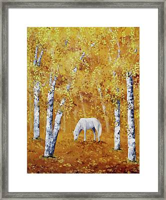 White Horse In Golden Woods Framed Print by Laura Iverson