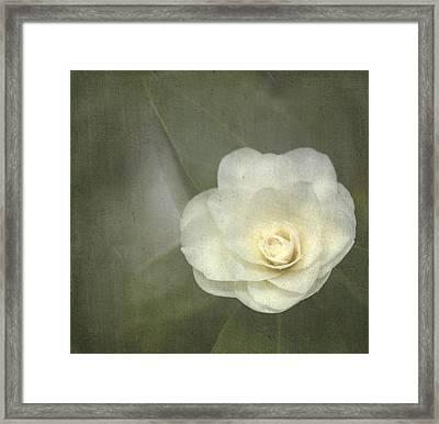 White In The Corner Framed Print by Rebecca Cozart
