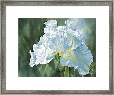 White Iris Framed Print by Sharon Freeman