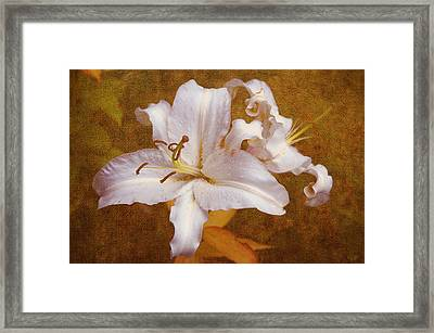 White Lilies. Time To Be Romantic Framed Print by Jenny Rainbow