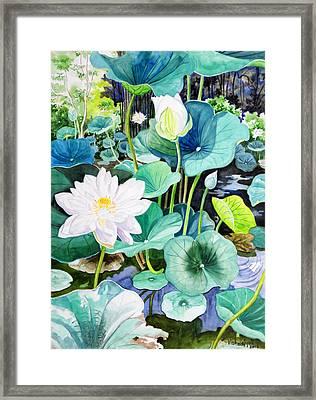 White Lotus 1 Framed Print by Vishwajyoti Mohrhoff