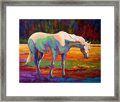 White Mare II Framed Print by Marion Rose