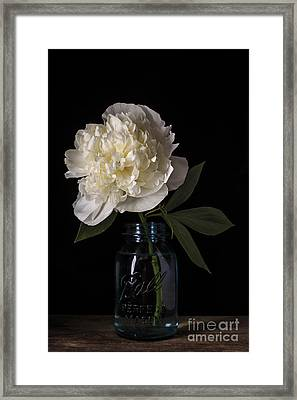 White Peony Flower Framed Print by Edward Fielding