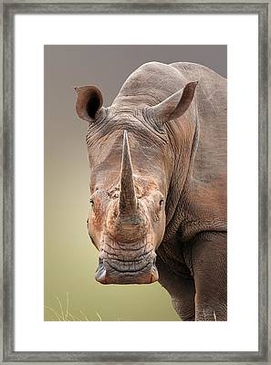 White Rhinoceros Portrait Framed Print by Johan Swanepoel