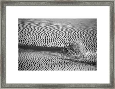 White Sands Ripples Framed Print by Peter Tellone