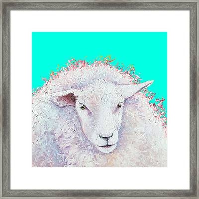 White Sheep On Turquoise Background Framed Print by Jan Matson