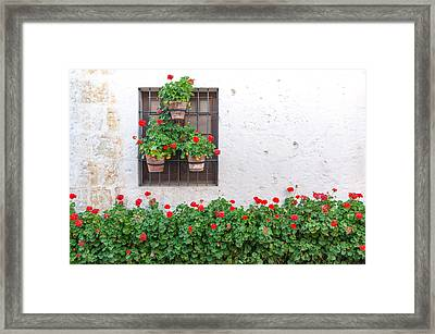 White Wall And Red Flowers Framed Print by Jess Kraft