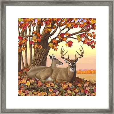 Whitetail Deer - Hilltop Retreat Framed Print by Crista Forest
