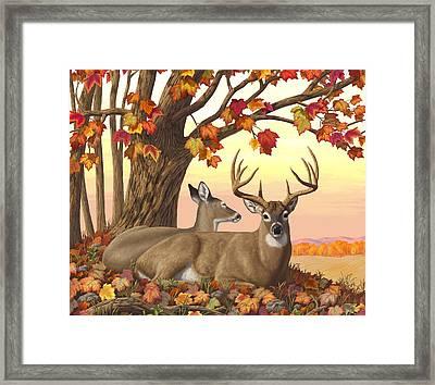 Whitetail Deer - Hilltop Retreat Horizontal Framed Print by Crista Forest