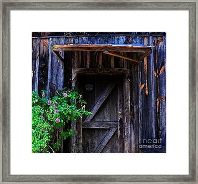 Who Is Living Here Framed Print by Barbara Teller