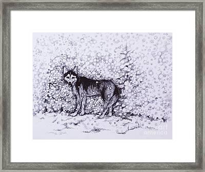 Who Likes Snow Day Framed Print by Anna  Duyunova