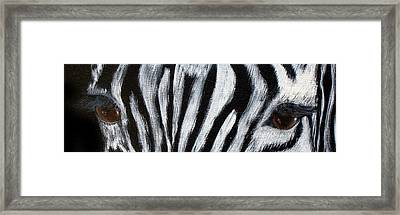 Whos Watching Who   Zebra Framed Print by Darlene Green
