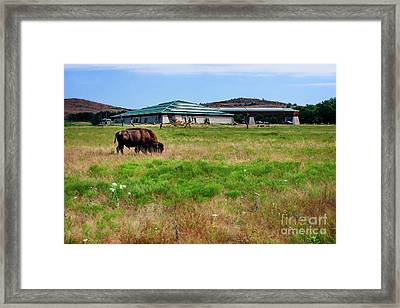 Wichita Mountain Wildlife Reserve Welcome Center I Framed Print by Tamyra Ayles