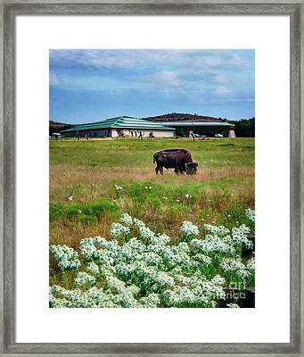 Wichita Mountain Wildlife Reserve Welcome Center Verticle Framed Print by Tamyra Ayles
