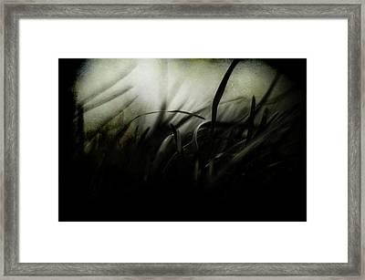 Wicked Garden Framed Print by Rebecca Sherman