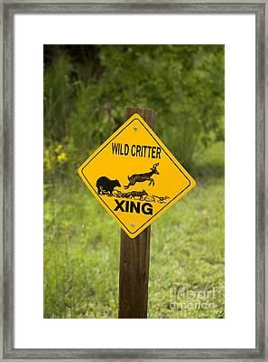 Wild Critter Crossing Sign Framed Print by Inga Spence