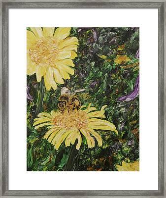 Wild Daisy Framed Print by Bonnie Peacher