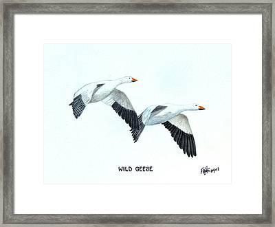 Wild Geese Framed Print by Frederic Kohli
