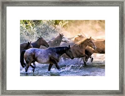 Wild Herd Framed Print by Janet Fikar