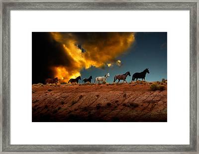Wild Horses At Sunset Framed Print by Harry Spitz