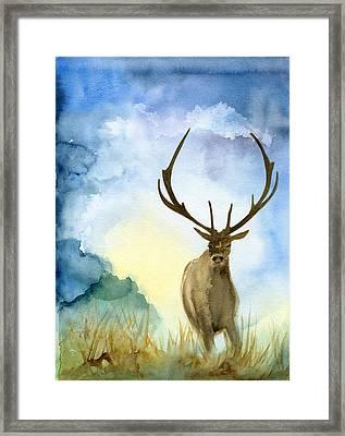 Wild Life Framed Print by Bitten Kari