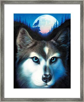 Wild One Framed Print by Andrew Farley