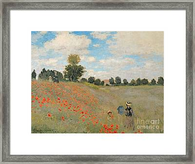 Wild Poppies Near Argenteuil Framed Print by Claude Monet