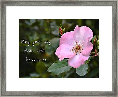 Wild Rose With Quote Framed Print by Marion McCristall