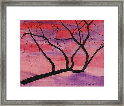 Wild Sky And Tree Framed Print by Suzanne  Marie Leclair