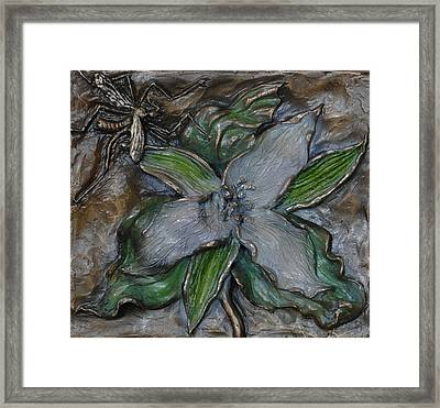 Wild Trillium And Cranefly  Framed Print by Dawn Senior-Trask