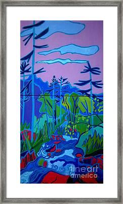 Wildcat River Jackson Nh Framed Print by Debra Bretton Robinson