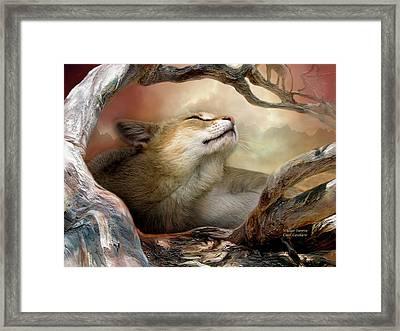 Wildcat Sunrise Framed Print by Carol Cavalaris