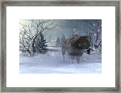 Wilderness Framed Print by Betsy C Knapp